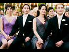 Ashley Greene, Jackson Rathbone, Elizabeth Reaser and Peter Facinelli